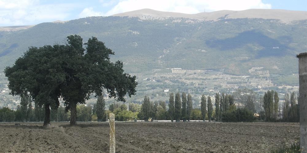 Assisifahrt 2011